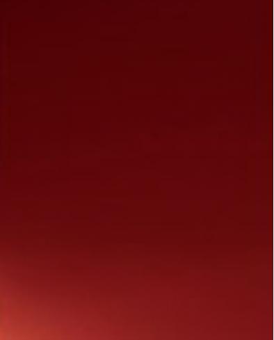 Z-SERIE RUBY RED